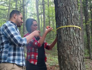 Workshop attendees practice measuring the circumference of a tree to determine how much stored carbon it has.