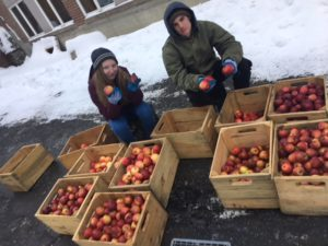 Sydney Reid and Silas Bohen sort apples in front of the CTWK root cellar