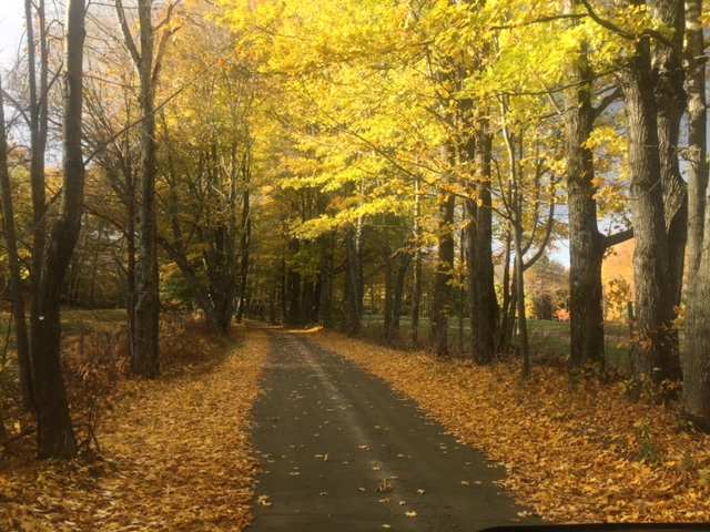 One of my favorite roads near Woodstock during fall foliage.